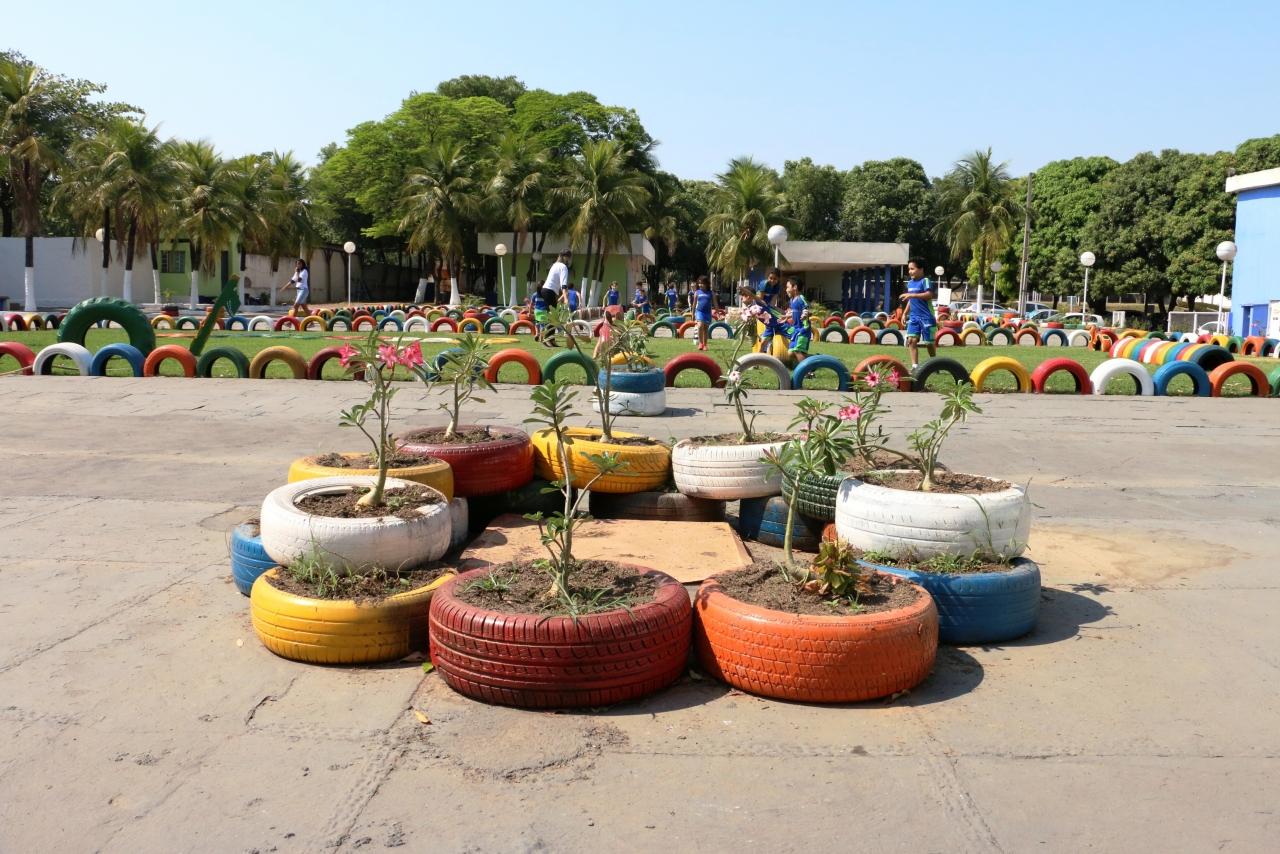 horta e jardim em pneus : horta e jardim em pneus: MT criam horta, jardim e parque sustentáveis com pneus e garrafas pet